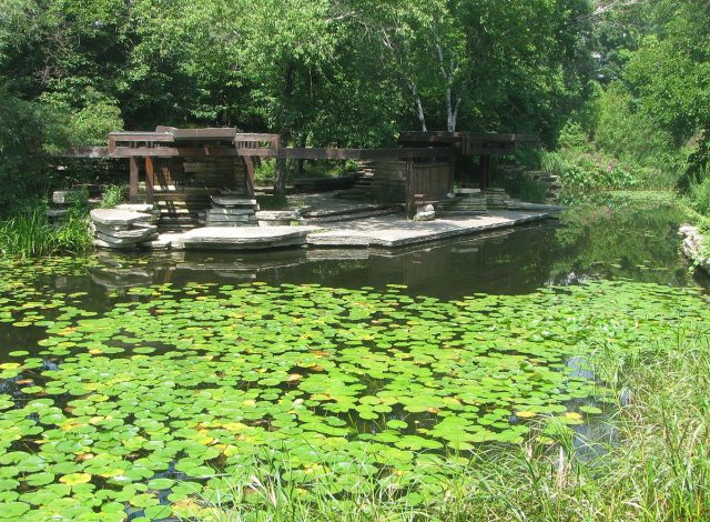 Alfred Caldwell Lily Pool in Lincoln Park is a National Historic Landmark listing. Author: TonyTheTiger CC-BY SA 3.0