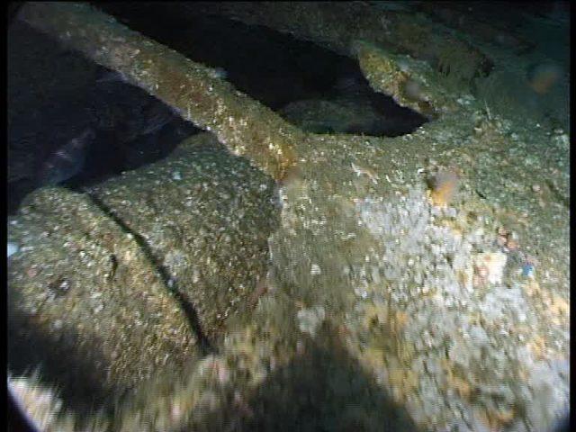 Steel torpedo tube – sign of a late war U-boat (Innes McCartney).