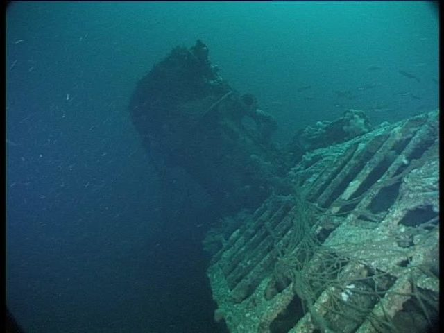 Conning tower recedes as the current blasts me down the wreck (Innes McCartney).