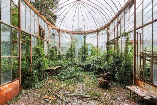 Abandoned Greenhouse. Author: Jonk Photography