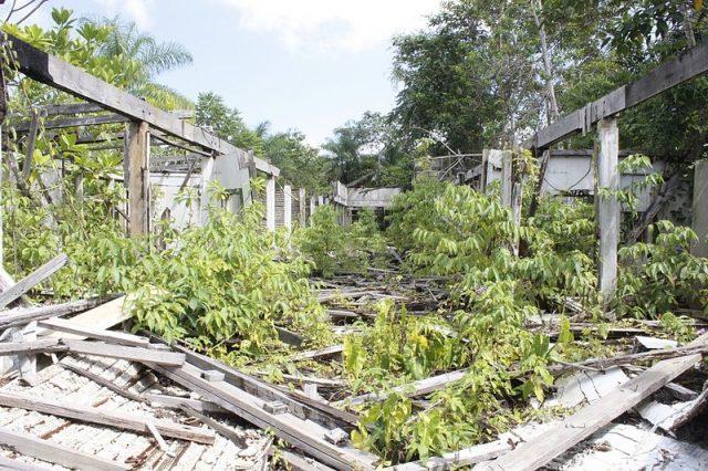 Fordlandia hospital destroyed by looting. Author:RodrigoCruzattiCC BY 4.0