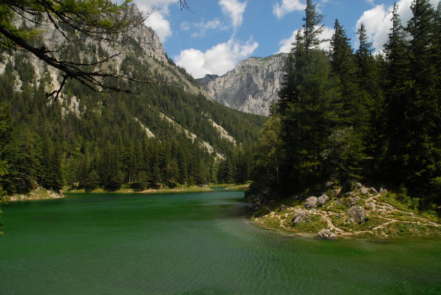 View of Green Lake in the Alps, Tragöß, Austria