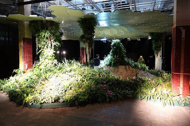 The Lowline would take advantage of custom-made solar technology to illuminate the subterranean gardenand provide plants with the solar juice they require to perform photosynthesis. Author: mike CC BY-SA 2.0