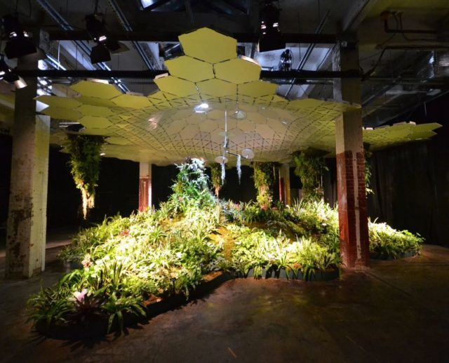 James Ramsey, a former NASA engineer, envisions having 3,500 different varieties of plants in the actual Lowline. Author: Jcbergland CC BY-SA 4.0