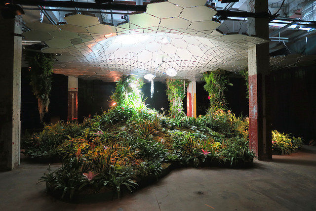The Lowline Lab – designed to test and showcase how the Lowline will grow and sustain plants underground. Author: Kristine Paulus CC BY 2.0