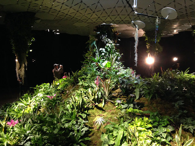 The Lowline Lab was opened in October 2015 as a working prototype to determine the long-term feasibility of the Delancey Underground project. Author: JL Wong CC BY 2.0