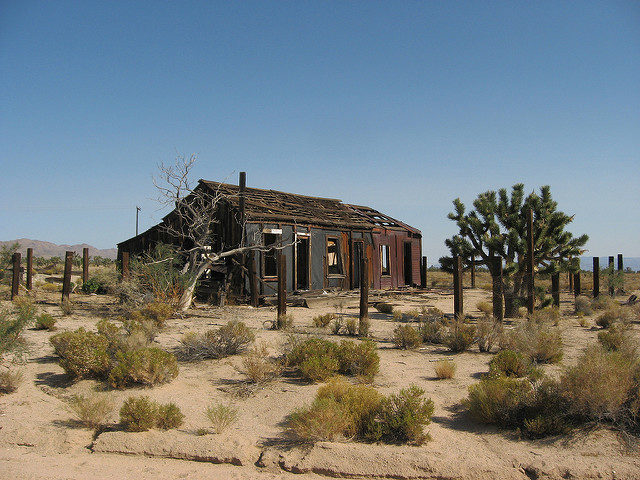 Cima is a small community in the Mojave Desert of California. It was once the main settlement for the miners. Now only a few people live in the area and is considered a ghost town. – By Ken Lund – CC BY-SA 2.0