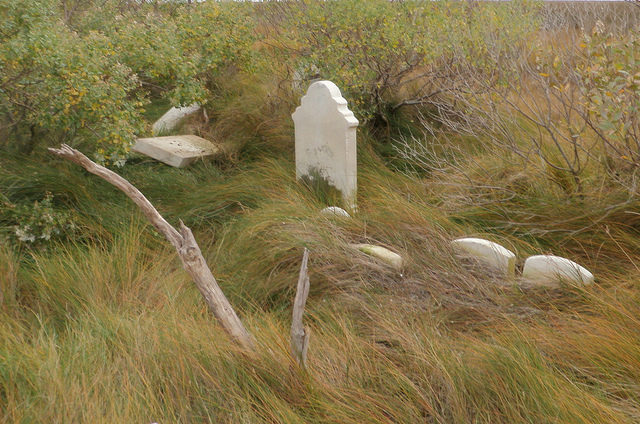 Headstones sinking into the marsh. Author: baldeaglebluff CC BY-SA 2.0