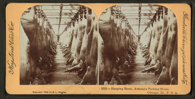 Hanging room, Armour's packing house. Public Domain