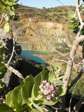 Seen from a distance – Like a hidden oasis. Author: Calistemon CC BY-SA 3.0