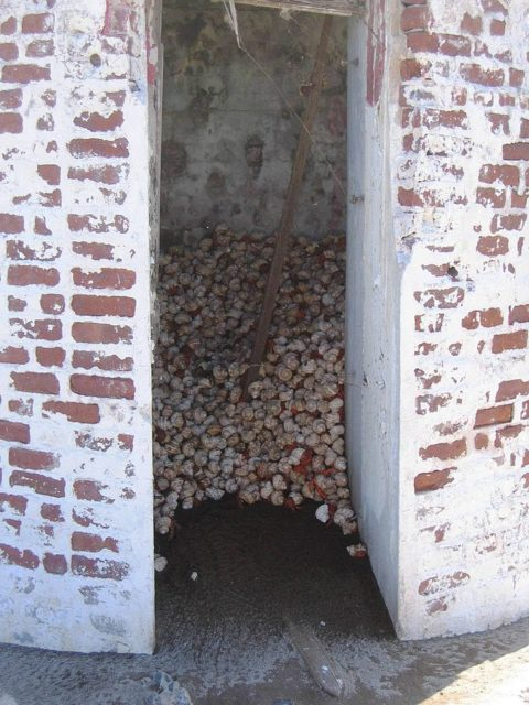 Hermit crabs taking shade in day beacon. Photo Credit:Joann94024,CC BY-SA 3.0