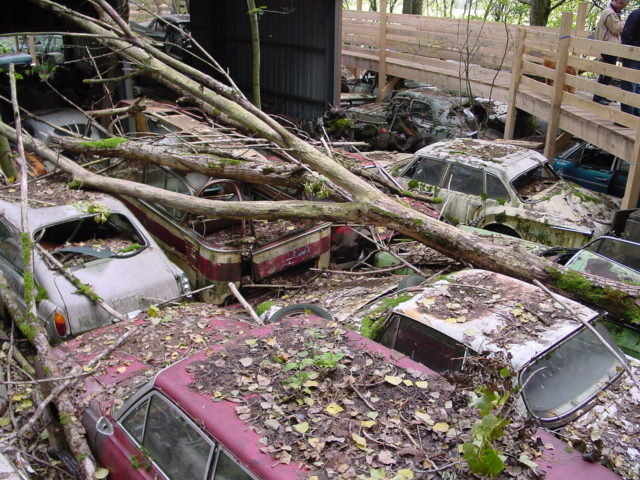 Cars hidden in the forest. Photo Credit: Netpilots, CC BY 3.0 ch