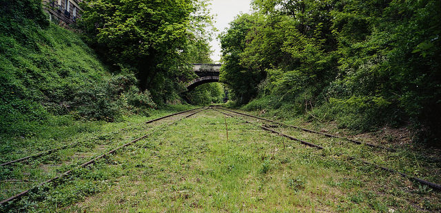 Chemin de fer de Petite Ceinture reclaimed by nature. Author: Thomas Claveirole CC BY-SA 2.0