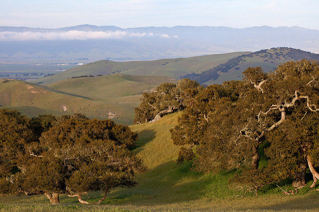 Fort Ord National Monument. Author: Bob Wick NM CC BY 2.0