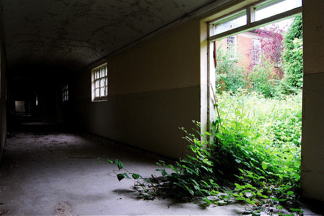 Nature encroaches. Author: Rob WalkerCC BY 2.0