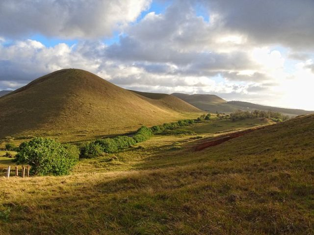 Typical landscape on Easter Island; rounded extinct volcanoes covered in low vegetation. Photo Credit