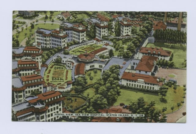 Aerial view of the hospital postcard. Author:Scan by NYPLPublic Domain