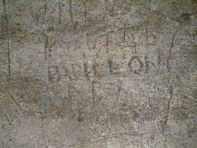 Another of Papillon's signatures.Author:Sébastien MAENNELCC BY-SA 3.0
