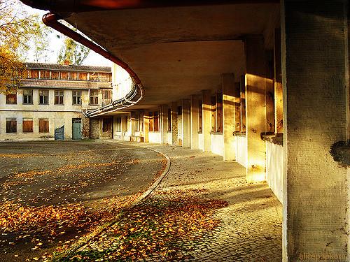 Empty streets. Author:Alice PopkornCC BY 2.0