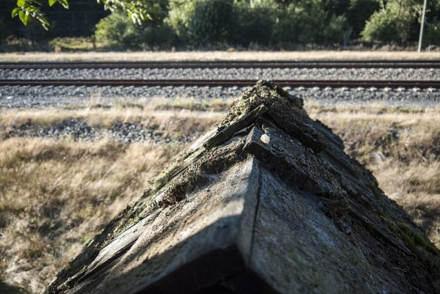 Tracks of the BNSF railroad just north of the ghost town of Lester, Washington. Author: BryonDavis. CC0