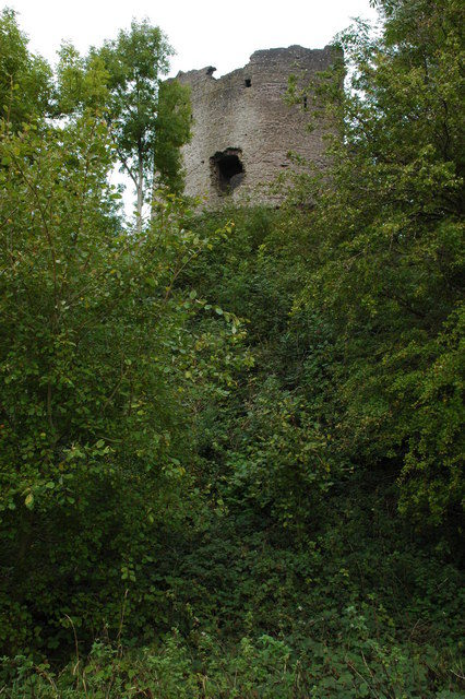 The keep of Longtown Castle viewed from the west/ Author: Philip Halling – CC BY-SA 2.0