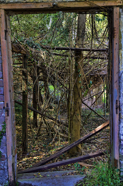 The abandoned garden folly. Author: Frederick Manning CC BY 2.0