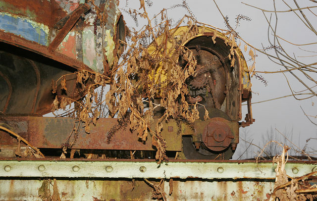 Tumble Bug's rusty gear. Author:Dana BeveridgeCC BY 2.0