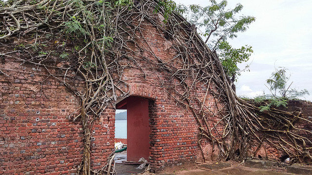 Walls covered with creepers. Author: Ankur P – CC BY-SA 2.0