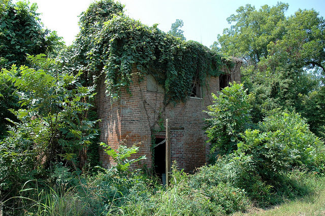 The overgrown hotel/ Author: Michael McCarthy – CC BY-ND 2.0