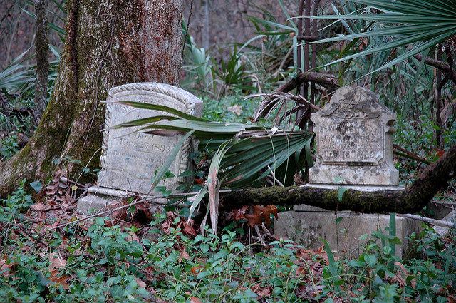 "Hundreds of graves are slowly ""melting"" into the forest/ Author: Michael McCarthy – CC BY-ND 2.0"