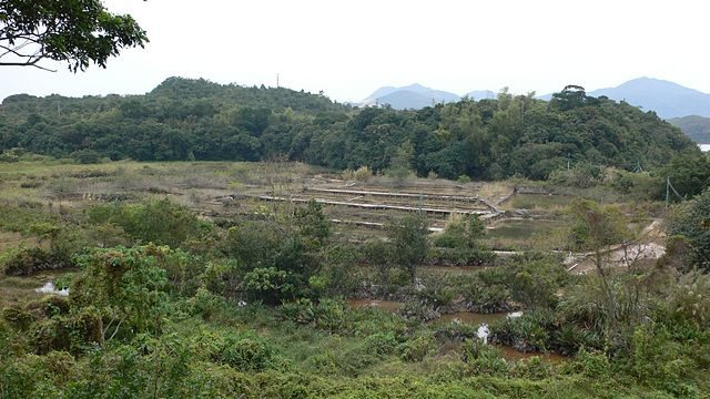 The abandoned salt farm in 2006/Author: Isaac Wong (惡德神父) – CC BY-SA 3.0