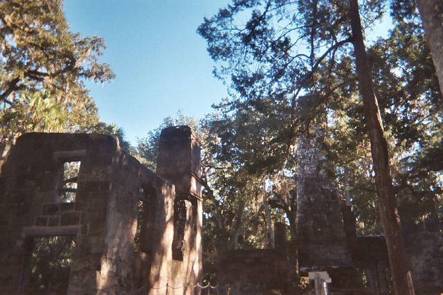 The ruins are hidden in the jungle. Author: Ebyabe – CC BY 2.5