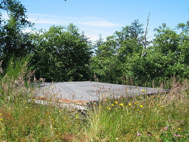 Bunker overgrown with vegetation/ Author: Bobjgalindo – CC BY-SA 3.0