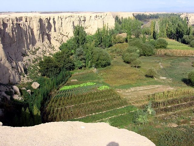 View from the plateau on which Jiaohe is situated/ Author:Colegota – CC BY-SA 2.5 es