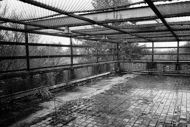 A cage-like courtyard. Author:Dan GroganCC BY 2.0