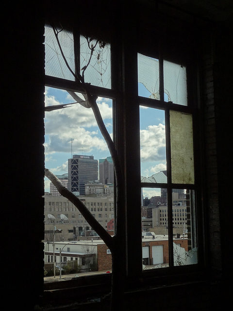 Looking out the window. Author: Paul SablemanCC BY 2.0