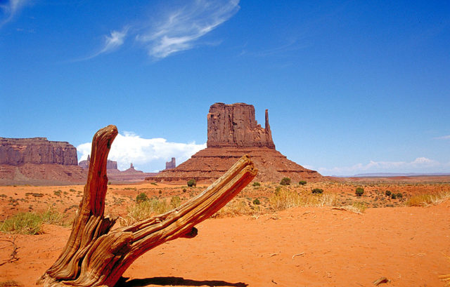 Monument Valley from the valley floor. Author: Huebi. CC BY 2.0 de