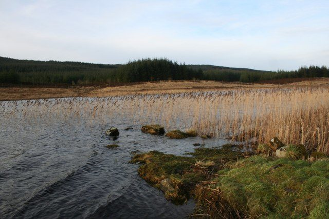 A few flat stones are all that remains of the jetty at Finlaggan/ Author: Andrew Wood – CC BY-SA 2.0