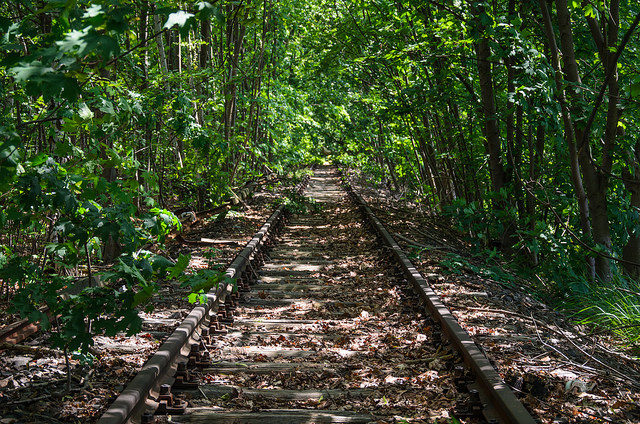 The quiet train tracks. Author:Stefan MuthCC BY-SA 2.0