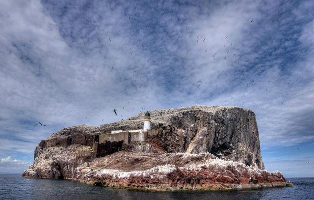 150,000 birds visit the island every year. Author:Borowski ericCC BY-SA 3.0