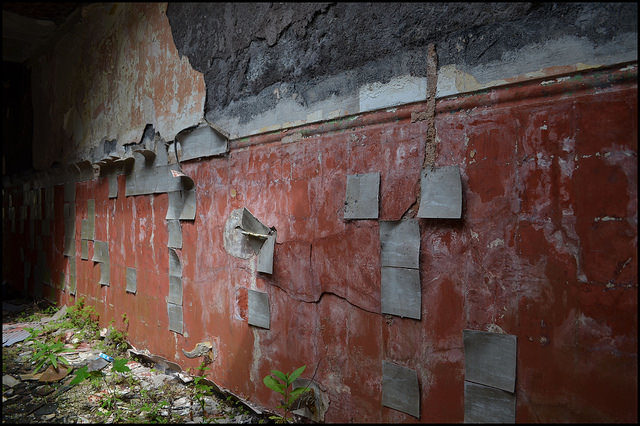 One of the many peeling walls. Author:LulaTaHulaCC BY-ND 2.0