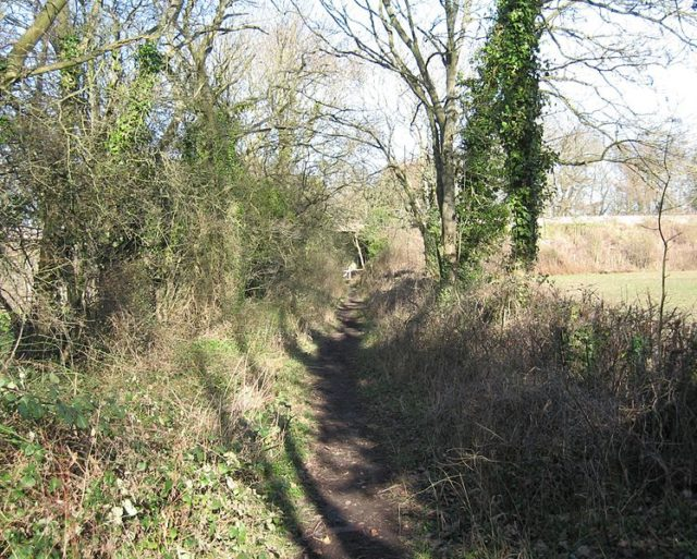 The former A&GR trackbed. Author:Bob&Anne PowellCC BY-SA 3.0