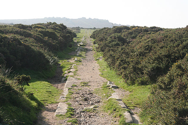 The tracks towards Holwell Tor.Author:Martin BodmanCC BY-SA 2.0