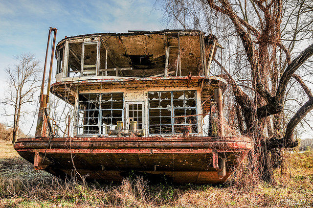 Torn apart by scrapes. Author:Michael McCarthyCC BY-ND 2.0
