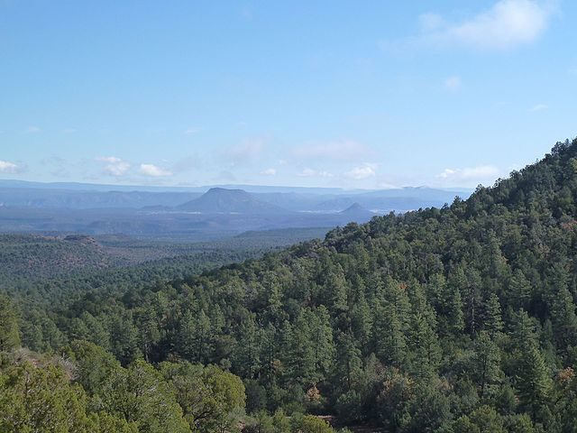 Another view of White Mountain Apache Reservation. Author: Chris English – CC BY-SA 3.0