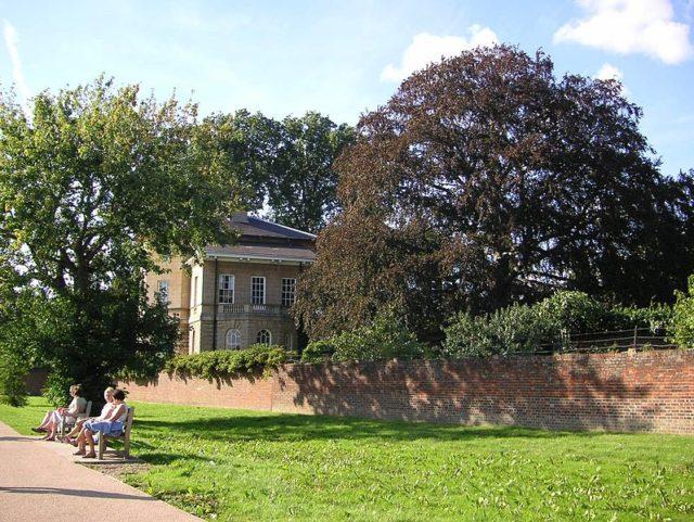 Asgill House and the Beech tree. Author:AmandajmCC BY-SA 3.0