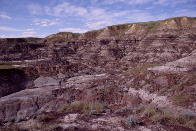 Drumheller Drylands. Author:AnomityCC BY-SA 3.0