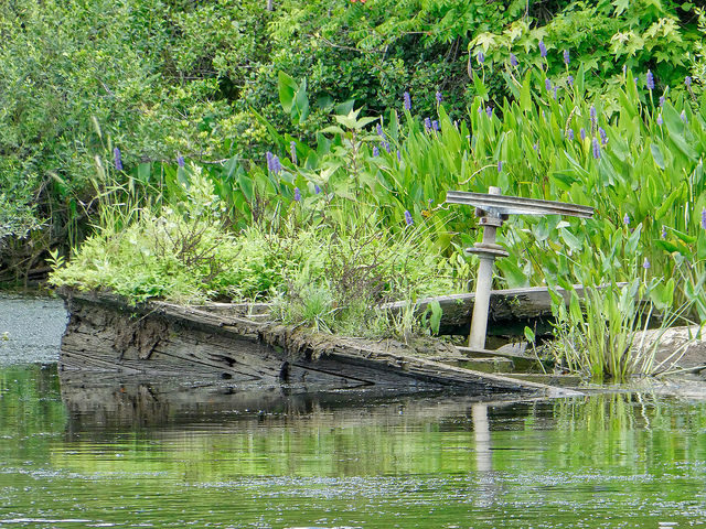 Forgotten wooden boat/ Author:F DelventhalCC BY 2.0