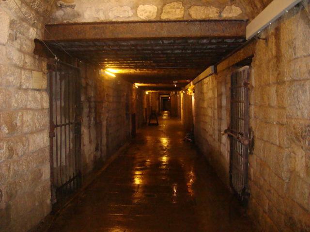 One of the tunnels/ Author:Eric T GuntherCC BY 3.0