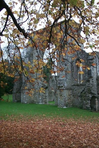 Part of the ruinated abbey. Author:David MainwoodCC BY-SA 2.0